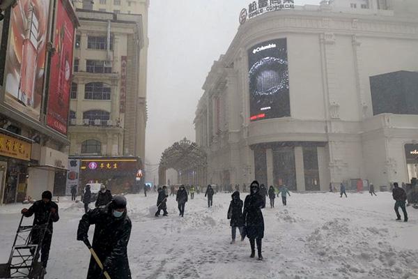 2020哈尔滨第一场大雪掠影